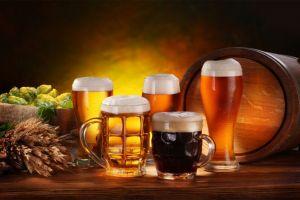 Top Ten of German Beers