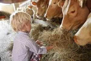 Kinderland® Bayern: Familienurlaub mit Qualität